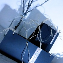 pakaging (39)